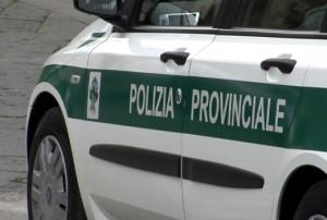 polizia-provinciale-la-nota-di-lettura-dellarticolo-5-del-dl-7815-per-l-attuazione-delle-nuove-disposizioni-sulla-polizia-provinciale.jpg